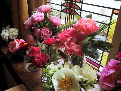 What Do Peonies Look Like In A Vase Peony Shop Holland